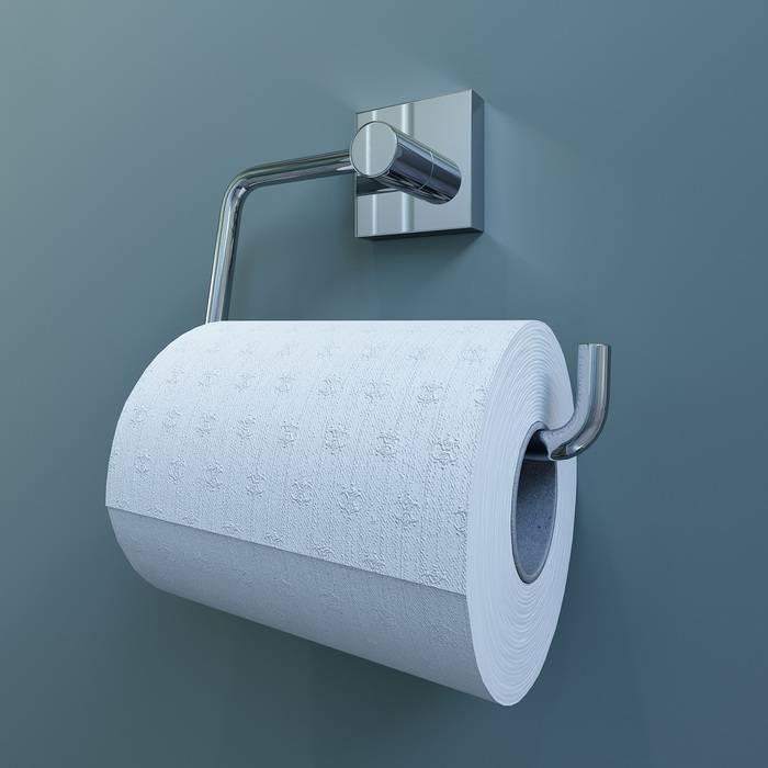 Фото Держатель для туалетной бумаги без крышки, латунь, IDDIS Edifice EDISB00i43 1